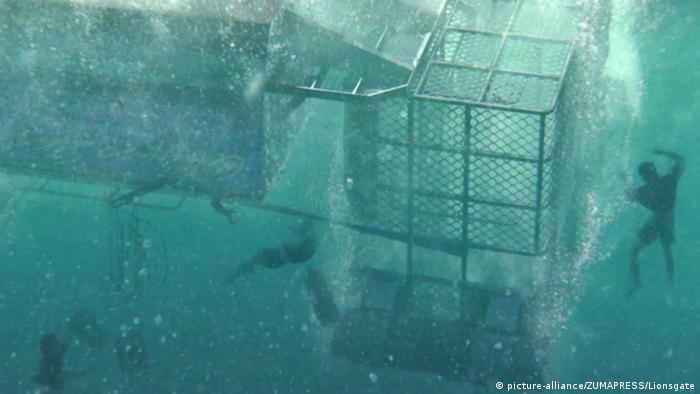 filming for Open Water 3 , underwater scene with divers and cages (picture-alliance/ZUMAPRESS/Lionsgate)