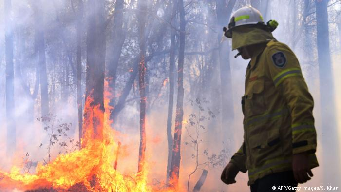 A firefighter works as a bushfire rages