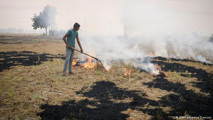 An Indian man rakes a field that is partially on fire as farmers try to clear land quickly (DW/Catherine Davison)