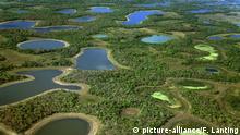 Südamerika - Brasilien- Pantanal - Landschaft