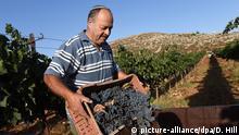 Weinanbau West Bank Siedler Israel