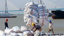 China Wirtschaft l Import von Sojabohnen aus Brasilien