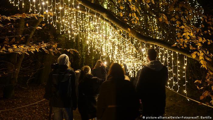 GermanyChristmas Garden in Berlin, festive light installations on tree branches (picture-alliance/Geisler-Fotopress/T. Bartilla)