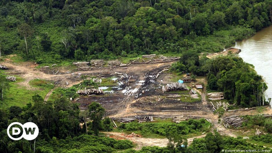 https://www.dw.com/ru/в-бразильской-амазонии-стали-вырубать-вдвое-больше-деревьев/a-51683767