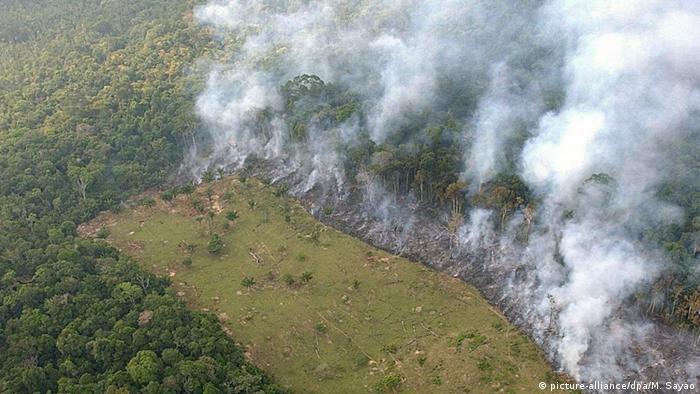 Desmatamento e queimada na Amazônia brasileira: medida de Bolsonaro pode anistiar desmatadores