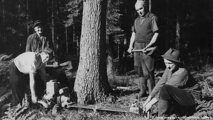 Richard Baer (pierwszy z prawej), były komendant Auschwitz. Po wojnie zmienił nazwisko na Klaus Neumann i był drwalem