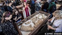 Ägypten Archäologen entdecken Grabkammer mit mumifizierten Tieren