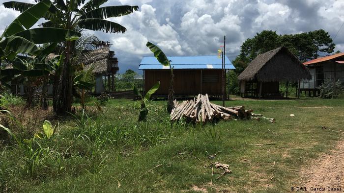 Árboles cortados para construir una casa en Santa Clara de Uchunya.