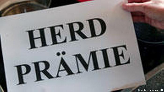 Jemand hält ein Schild mit dem Wort Herdprämie über einen Herd mit Töpfen (picture-alliance/ ZB)