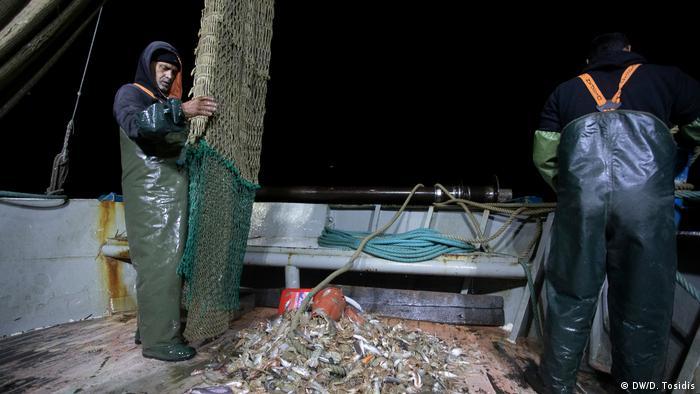 Fishermen unloading nets on a boat