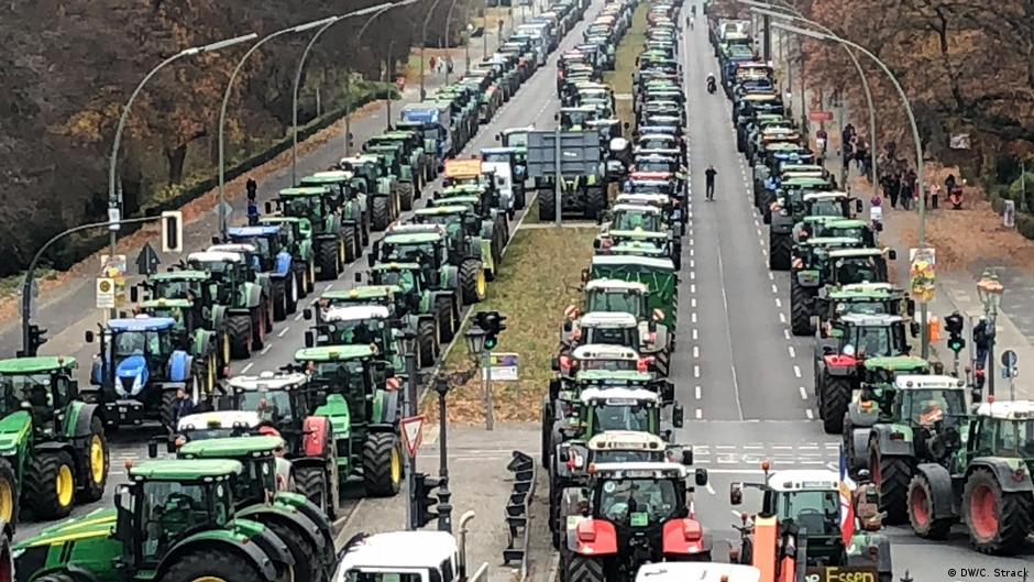 Для голосування за закон про ринок землі в Раді все готово, - радник прем'єра Мушак - Цензор.НЕТ 3358