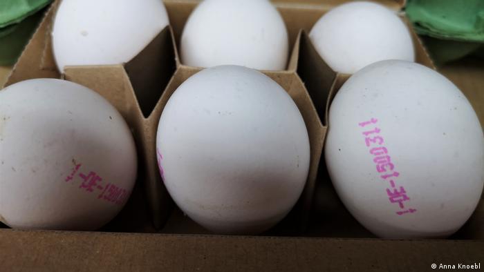 Eier-Codierung in deutschen Supermärkten