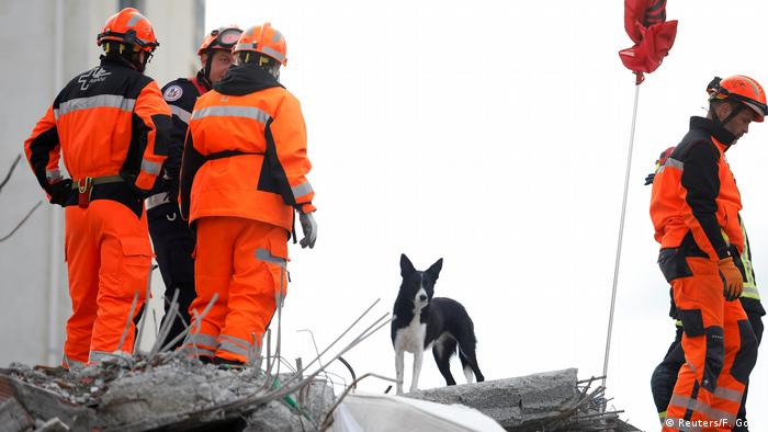 Rescue workers and a rescue dog in Albania