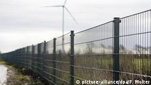 Dänemark Deutschland l Wildschweinzaun an dänischer Grenze