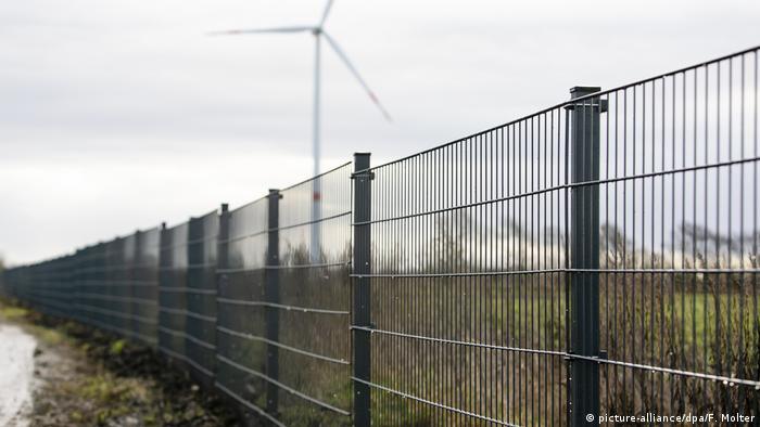 Ochrona przed dzikami na granicy Niemiec i Danii istnieje od grudnia 2019