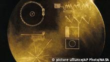This undated handout image provided by NASA shows a message carrying Golden Record that Voyager carried, a phonograph record-a 12-inch gold-plated copper disk containing sounds and images selected to portray the diversity of life and culture on Earth. Astronomers have their own cosmic version of the single person¿s Valentine¿s Day dilemma: Do you wait for that interesting person to call you or do you make the call yourself and risk getting shot down. Their version involves E.T. Instead of love, astronomers are looking for life out there in the universe. For decades, astronomers have sat by their telescopes, listened and waited for a call from E.T. only to be left alone. So now some of them want to aim their best radars and lasers out to the sky to say ¿We¿re here, call us¿ to the closest few thousand worlds. They can bring us all sorts of new technologies and answers to burning questions, some hope. (AP Photo/NASA) |