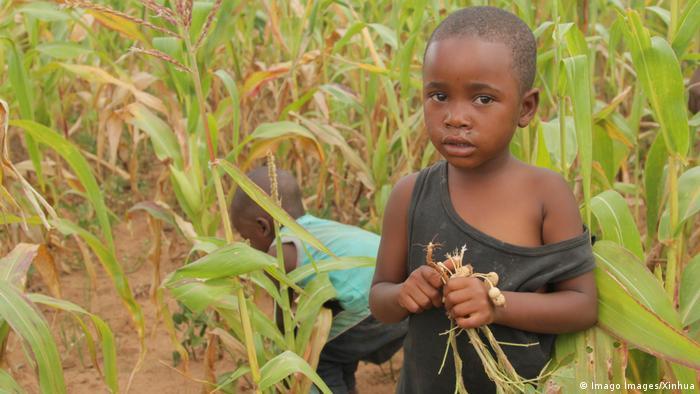 Simbabwe Macheke, Mashonaland East Province | Kind in trockenem Feld (Imago Images/Xinhua)
