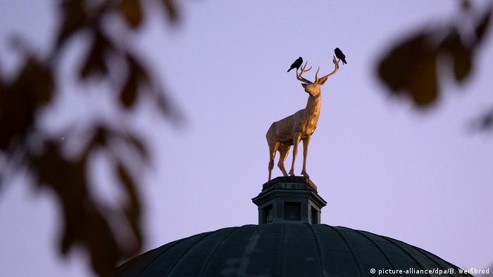 Dvije vrane dočekuju zoru. Udobno su se smjestile na rogovima pozlaćene skulpture jelena na vrhu zgrade Virtemberškog umjetničkog udruženja (Württembergische Kunstverein) u Štutgartu.