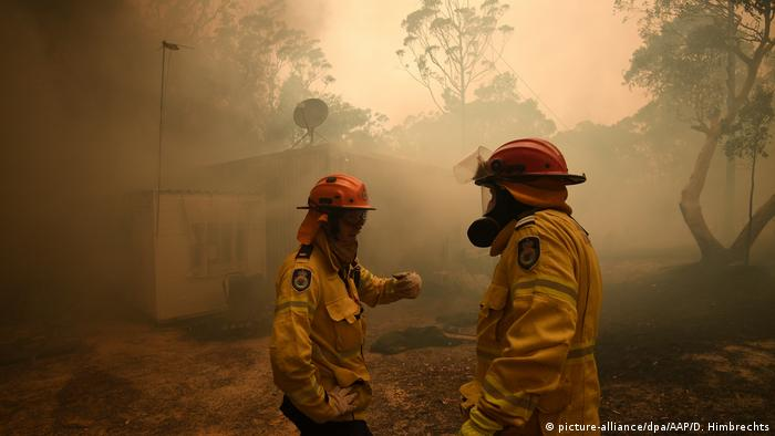 Buschbrände in Australien (picture-alliance/dpa/AAP/D. Himbrechts)