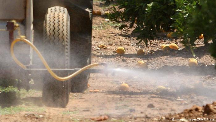 USA Kalifornien | Traktor sprüht Pestizide