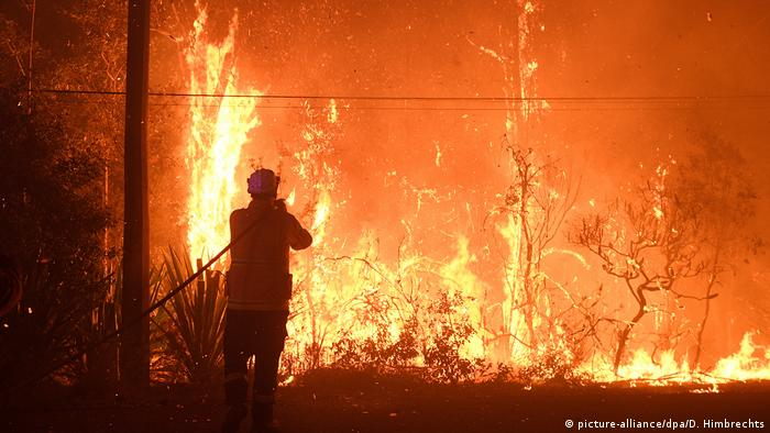 A firefighter faces a wildfire north of Sydney