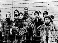 ۲۳۲ هزار کودک در آشویتس - بیرکنائو در اسارت نازیها بودند. اکثر آنان یهودی و بقیه کولی، لهستانی، روس و اوکراینی بودند. فقط دو هزار تن از آن کودکان زنده ماندند، که ۲۰۰ تن از آنان هنوز زندهاند. تصویر بالا متعلق به ژانویه ۱۹۴۵ است.