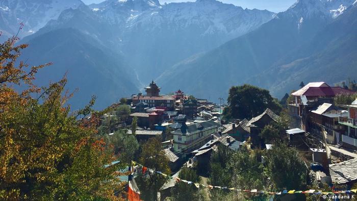 Kalpa apples in Himachal Pradesh, India