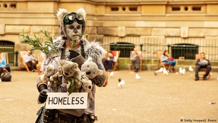 A man dressed in a Koala Bear outfit looks on as activists rally for climate action at Sydney Town Hall