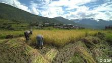 Global 3000 | Bhutan Glück