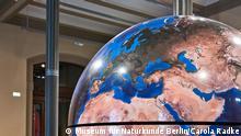Museum für Naturkunde Berlin - workshopreihe-klimawandel