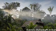 Eine traditionelle Hütte im Regenwald in der Loreto-Region in Peru