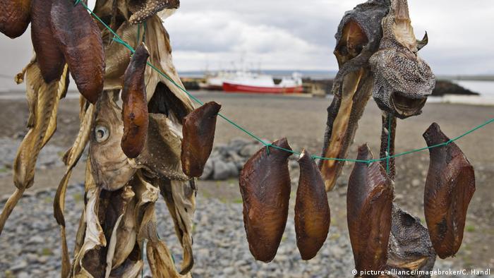 Islandia suszone ryby