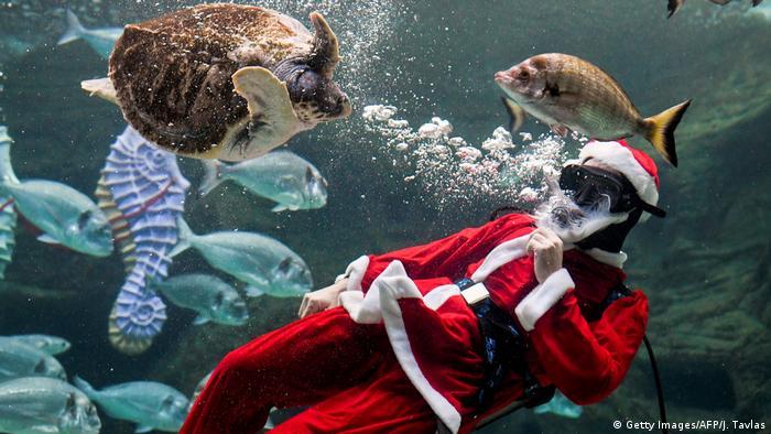 BdTD Griechenland Kreta | Weihnachtsmann in Aquarium (Getty Images/AFP/J. Tavlas)