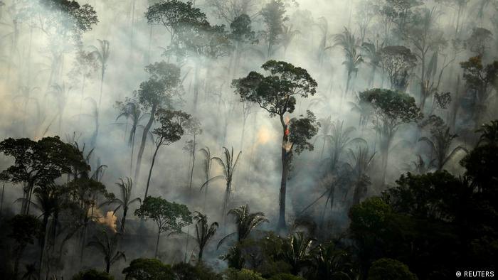 Smoke seen through the Amazon rainforest during the wildfires (Reuters/B. Kelly)