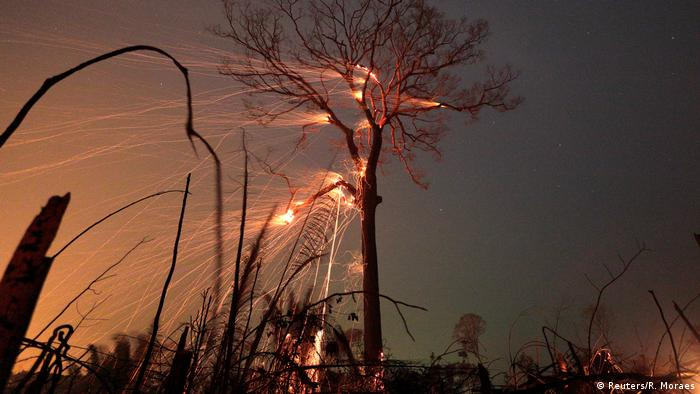 A part of the Amazon jungle burns