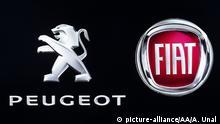 Peugeot und Fiat