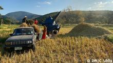 DW Global Ideas | Beitrag aus Thailand | Reis-Stroh
