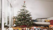 El árbol de navidad es, para muchos, un símbolo de las fiestas. Pero muchos abetos son tratados con pesticidas, que no solo son perjudiciales para el suelo y el agua, sino que también dejan su huella tóxica en los hogares. En Alemania, la alternativa son los árboles ecológicos con los sellos Bio, Naturland y FSC.