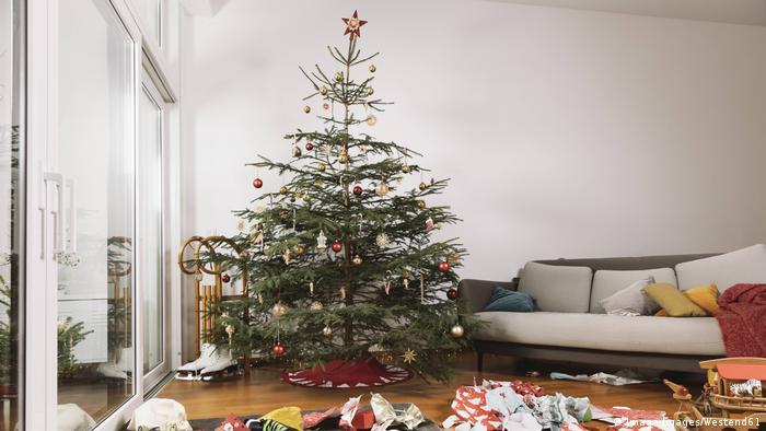 Wohnzimmer mit Weihnachtsbaum (Imago Images/Westend61)
