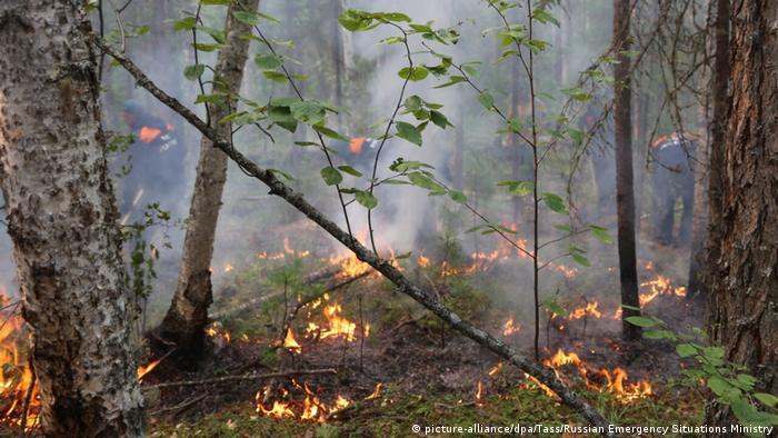 Russland Waldbrände in Sibirien