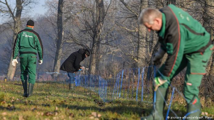 Budowa ogrodzenia na granicy niemiecko-polskiej