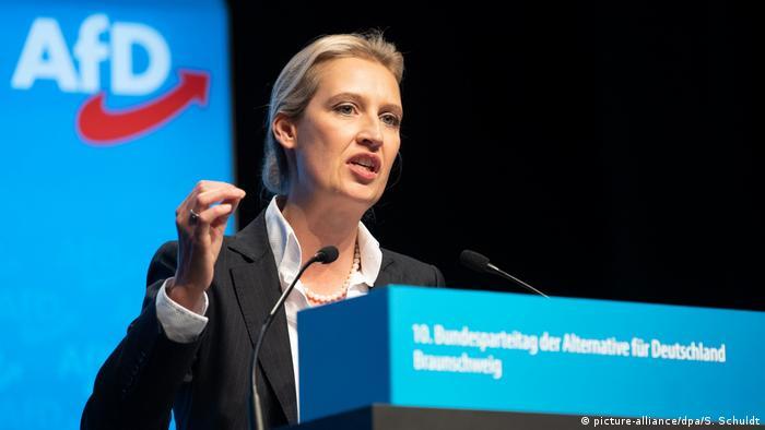 Alice Weidel AfD Deutschland Politik