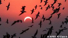 Kuwait Sonnenfinsternis