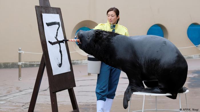 BdTD Tokio Seelöwe schreibt Zeichen für Ratte (AFP/K. Nogi)