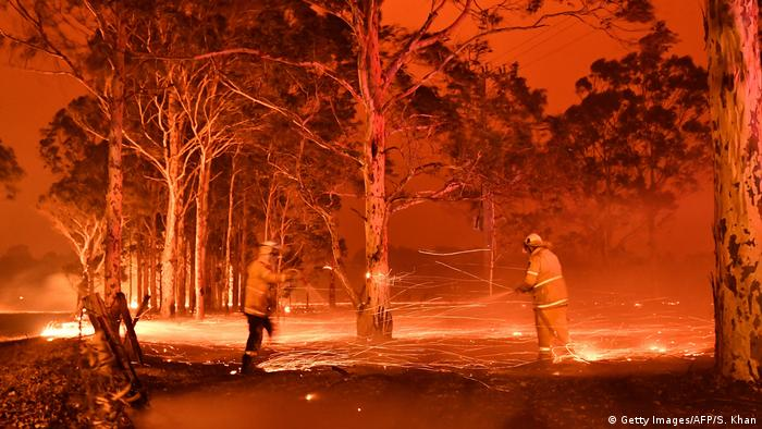Firefighters battling bushfires around the town of Nowra in New South Wales, Australia