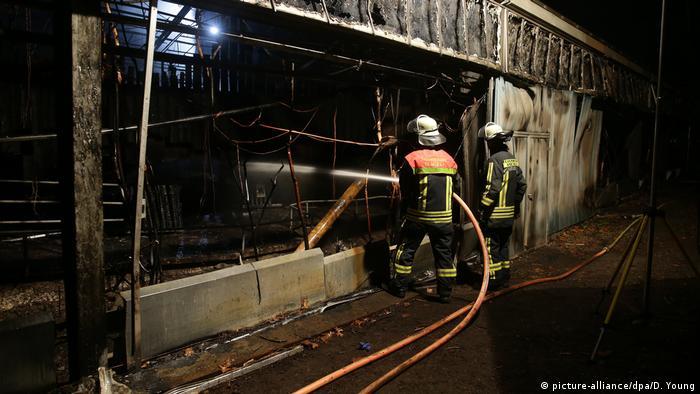'No surviving animals' after fire burns through German zoo