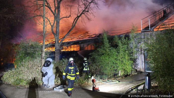 Firefighters tackle blaze at Krefeld Zoo