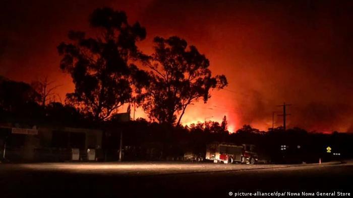 Buschbrände in Australien (picture-alliance/dpa/ Nowa Nowa General Store)