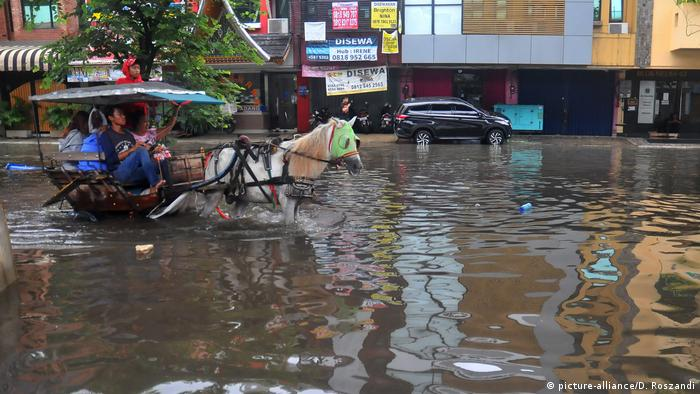 A horse takes on the floods in Jakarta