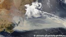 Buschbrände in Australien - Satellitenfoto